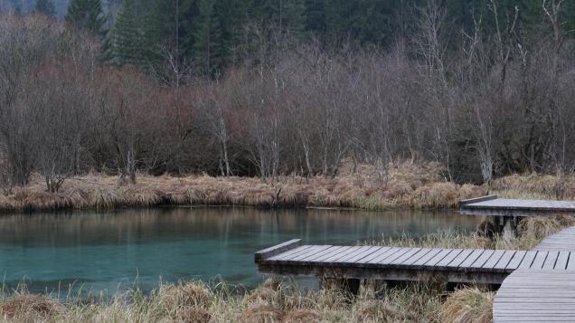 Sava Spring